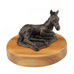 Lying Foal on Wood Base