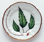 Green Leaf Salad Plate