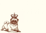 Royal Pug Notecards with Envelopes