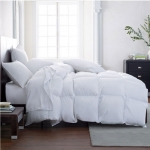 Vienna Medium Warmth Queen Comforter